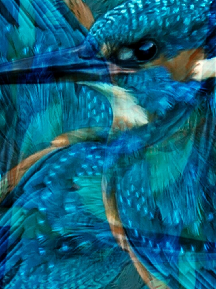 Designs Inspired By Nature: Kingfisher by AliusImago