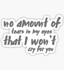 no amount of tears in my eyes that I won't cry for you Sticker