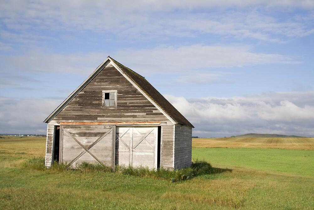 Old Garage by DakotaDawn