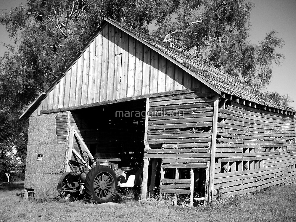 Old Shed Old Tractor by maragoldlady