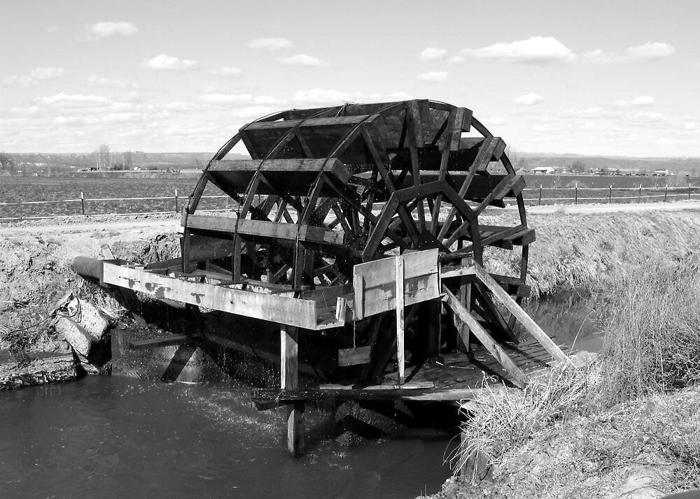 Water Wheel by ogercaveman