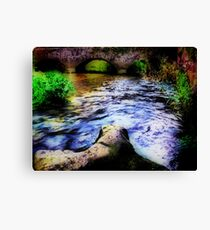 The Piddle in Puddletown. Canvas Print