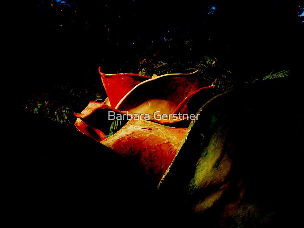 Hidden Treasure by Barbara Gerstner
