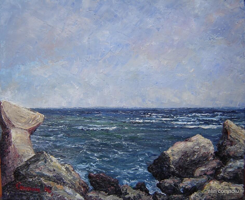 the sea from the mole by alin comnoiu
