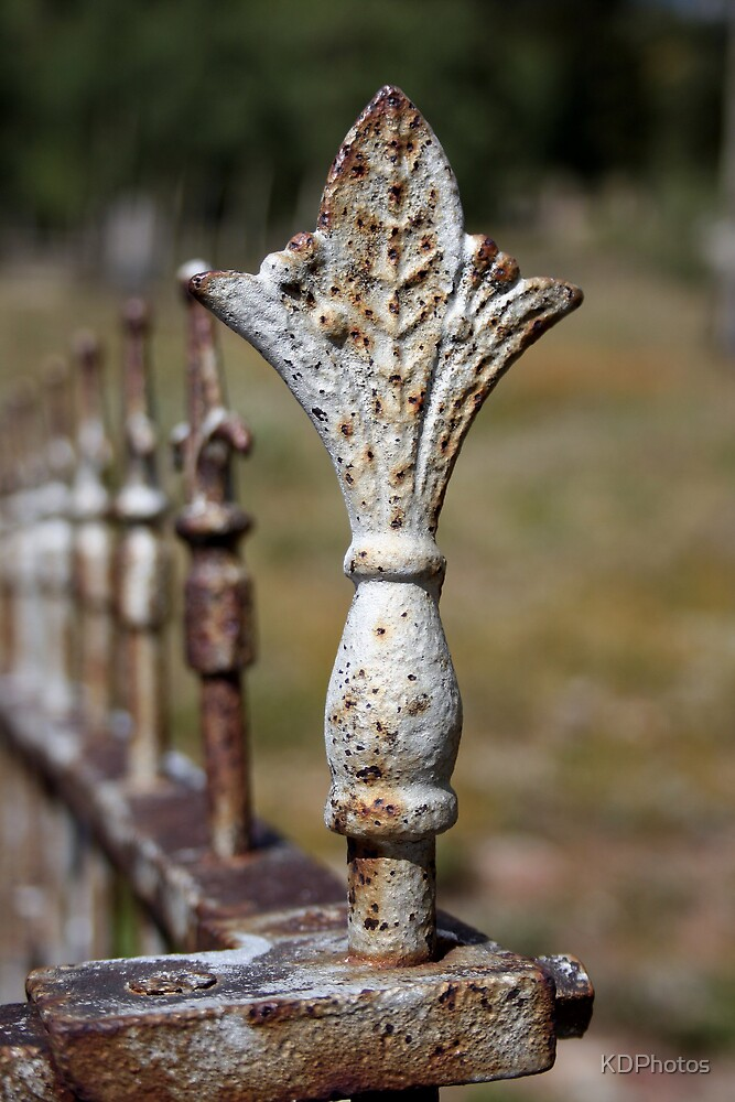 Old Fence Post by KDPhotos