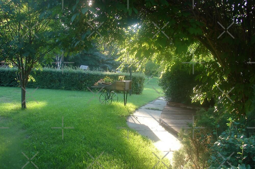 A Sunlit Path by Diane Petker