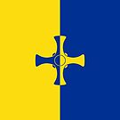 County Durham Flag Phone Cases II by mpodger