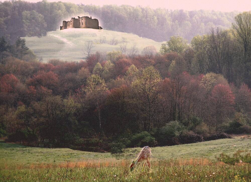 Below the castle by Judi Taylor