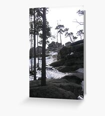 Woods up to Okzhetpes Greeting Card