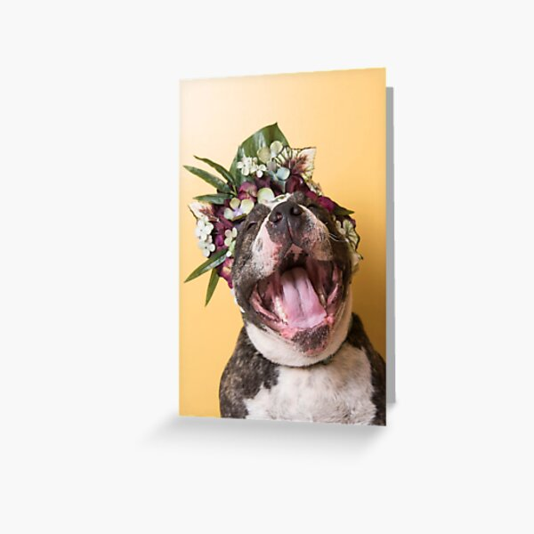 Flower Power, Luther laughing Greeting Card
