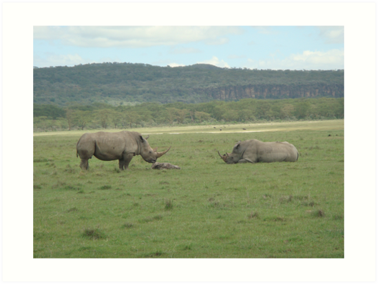Rhinos in Mourning by Jewell