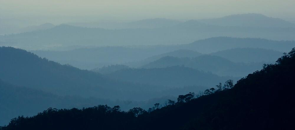 Early Morning - Gibraltar Ranges by Trevor Farrell
