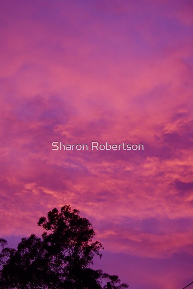 Purple/Pink Sunset by Sharon Robertson