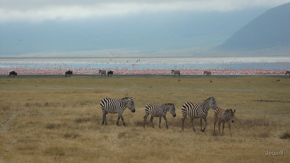 Ngorongoro Crater by Jewell
