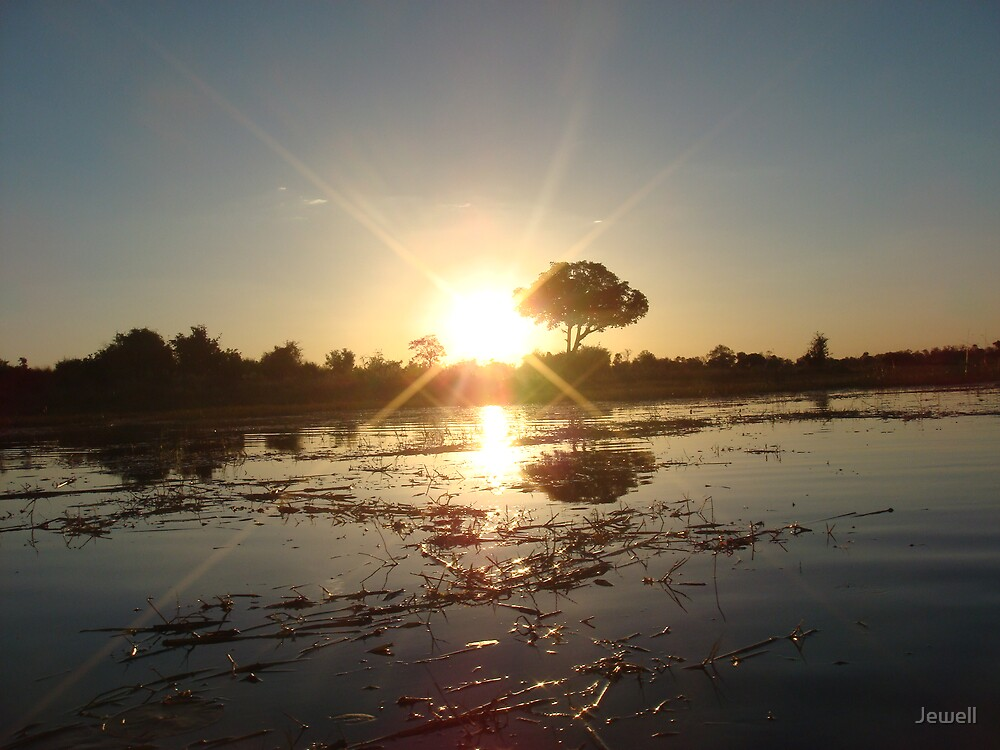 Okavango Delta by Jewell