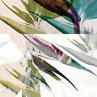 Abstract Strelitzia by angelo cerantola