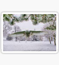 Snowy Owl In A Winter Wonderland Sticker