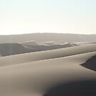 Namibian Sand Dunes by Jewell