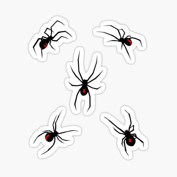 Gewichtsverlust Übungen mit Spinnen