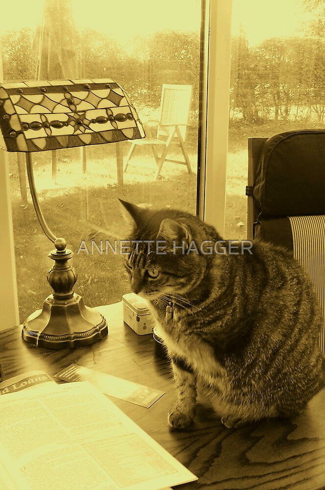 JESS by ANNETTE HAGGER