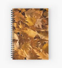 Golden Birch Leaves  Spiral Notebook