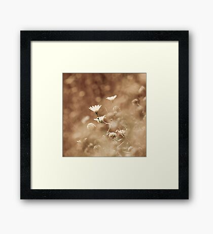 out of blur Framed Print
