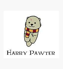 Harry Pawter Photographic Print