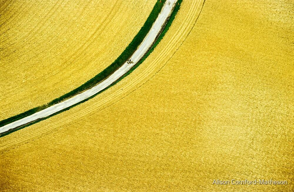 Aerial Wheatfield by Alison Cornford-Matheson
