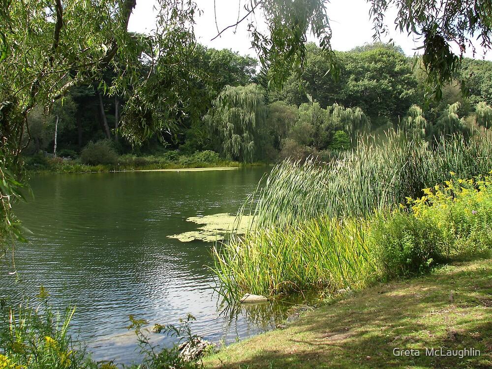 Grenadier Pond by Greta  McLaughlin