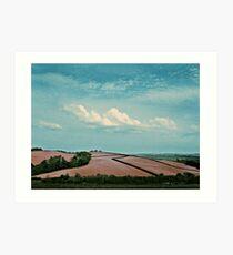 Ploughed field,  Bideford, Devon Art Print