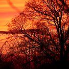 Autumn Sunset by Trevor Kersley