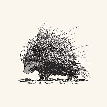 Porcupine by dmtab