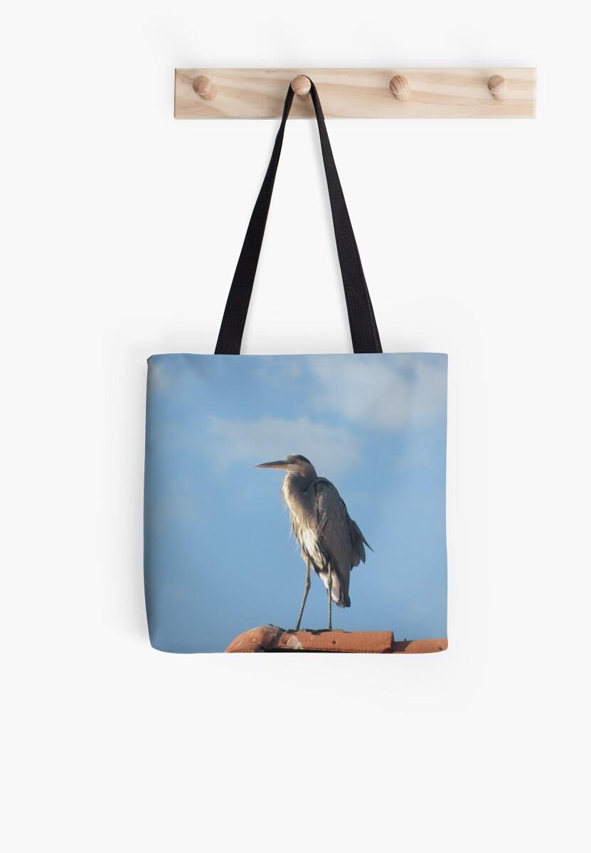 Heron Wonder by Bonnie Pelton