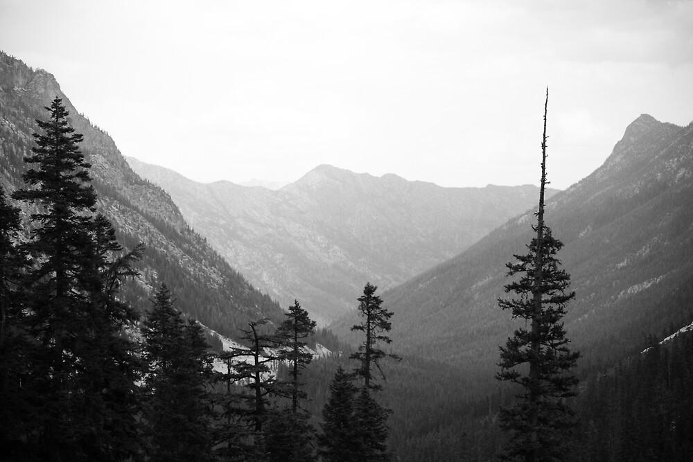 Mountain by Adam  Scholl