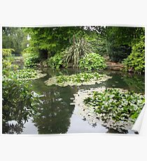 Pond Rowntree Park Poster
