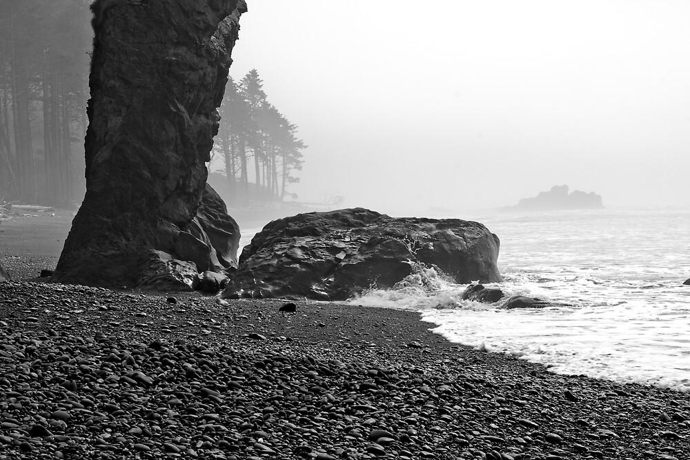 Beach by Adam  Scholl