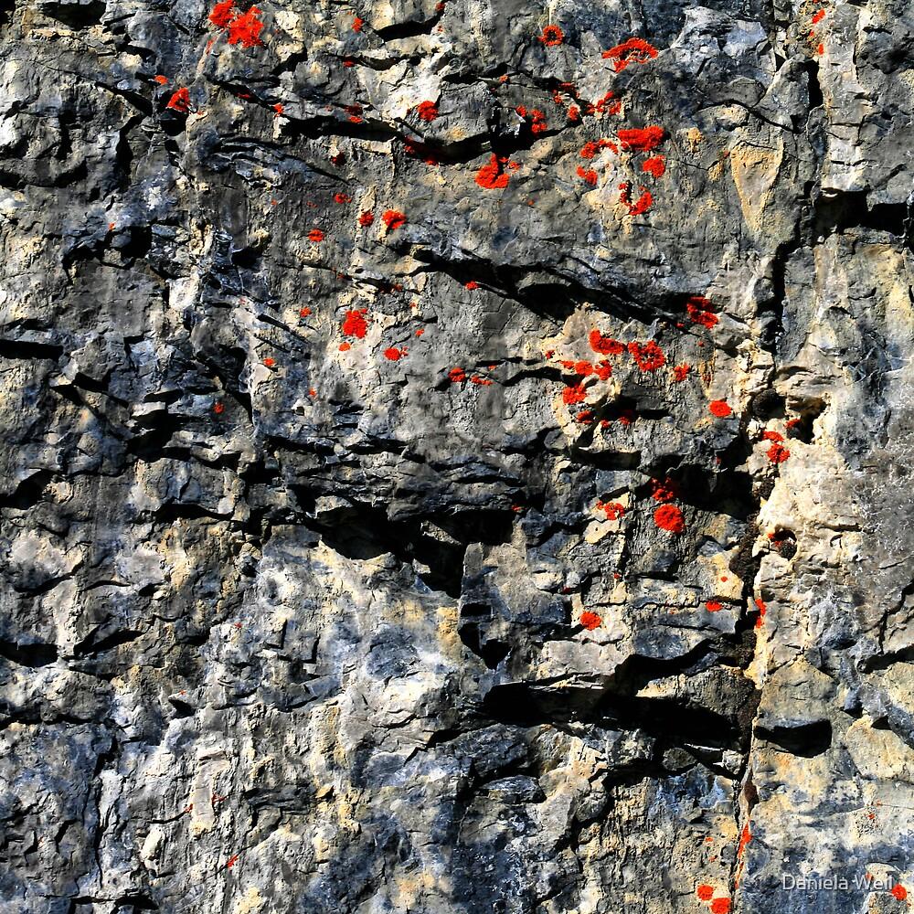 Stone & Sulphur by Daniela Weil