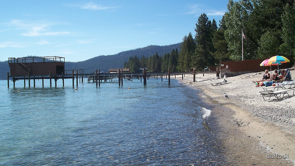North Lake tahoe by daffodil