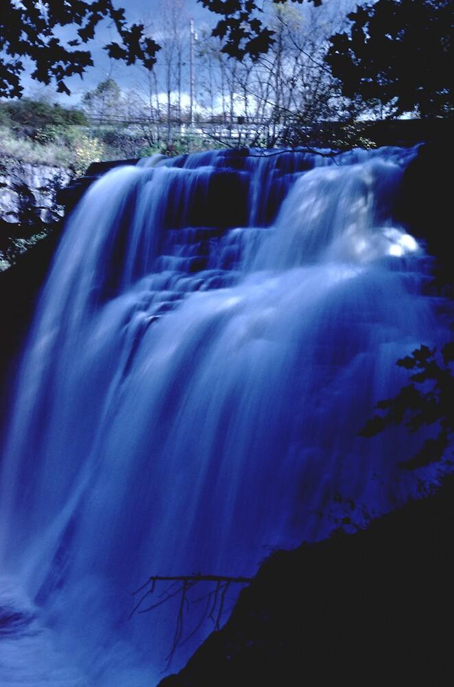092408-1   BRANDYWINE BLUE by MICKSPIXPHOTOS