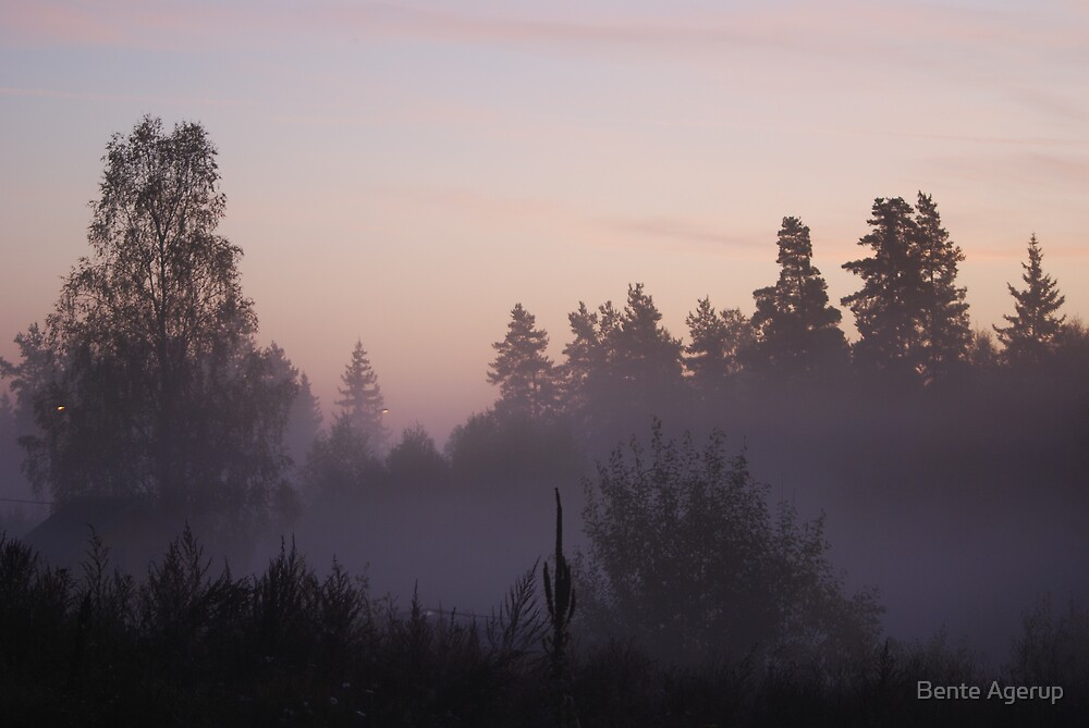 Early morning mist by Bente Agerup
