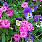 Pink & Purple Flowers by Cynthia48