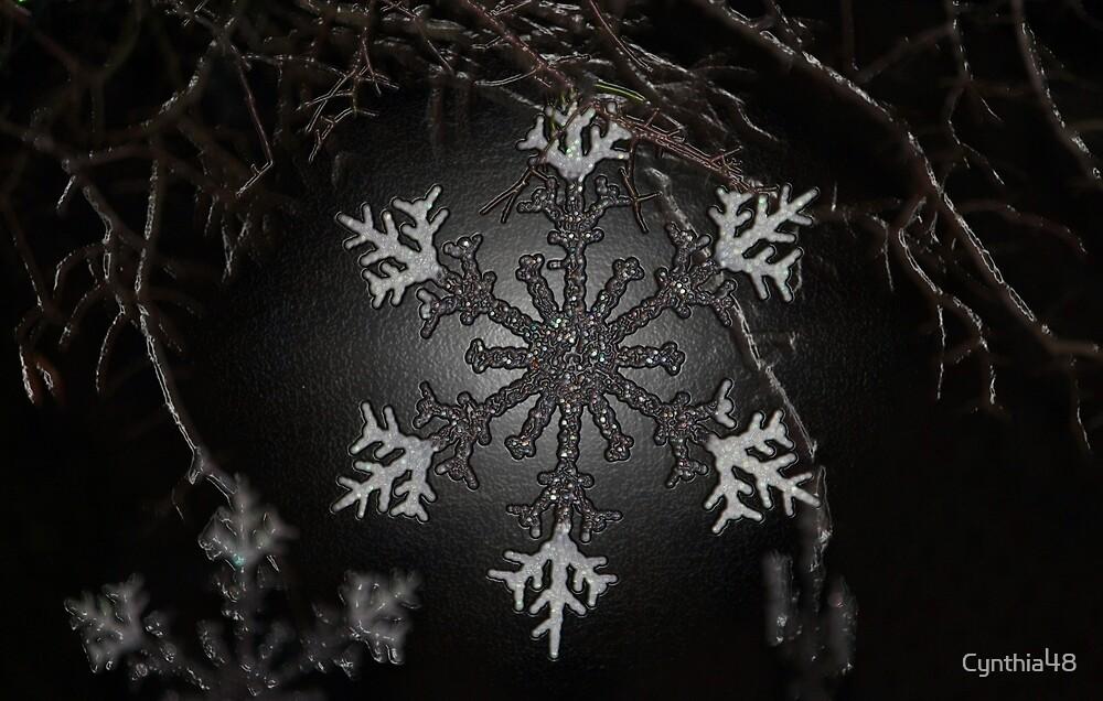 Snowflakes by Cynthia48