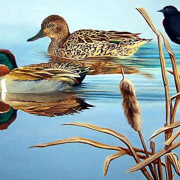 Green-winged Teals by JohnHoule