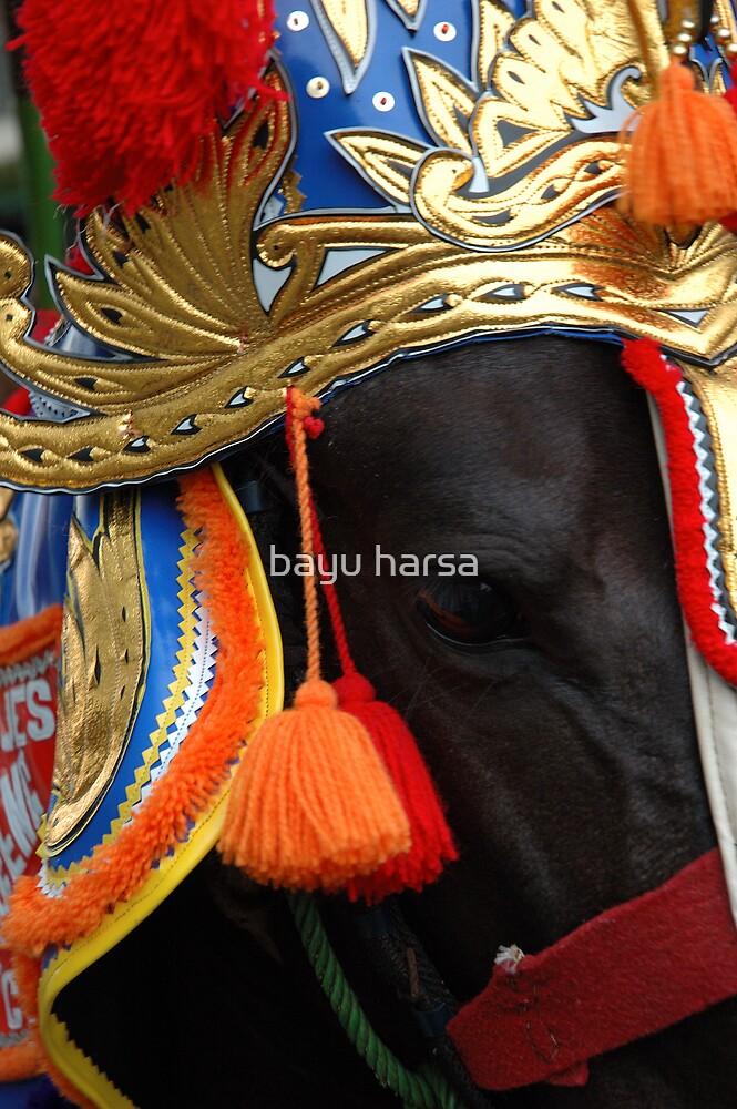 renggong horse by bayu harsa