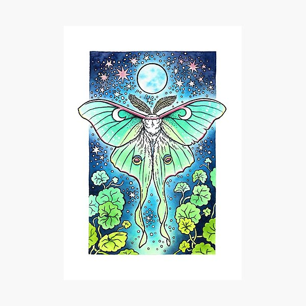 Moth of the Blue Moon | Luna Moth Art Photographic Print