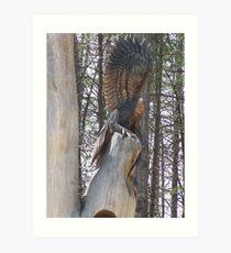 Majestic Eagle tree carving Art Print