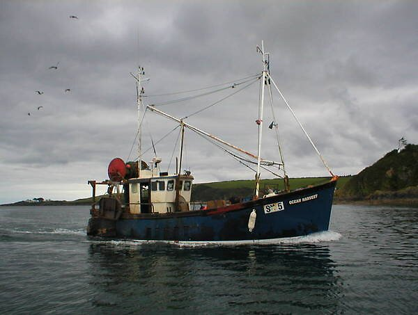 mfv ocean harvest sy5 by joe238