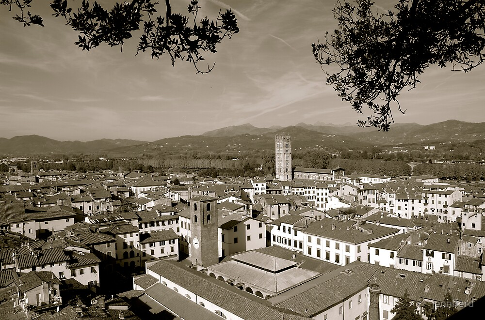 Lucca, Italy rooftops by jenniferd