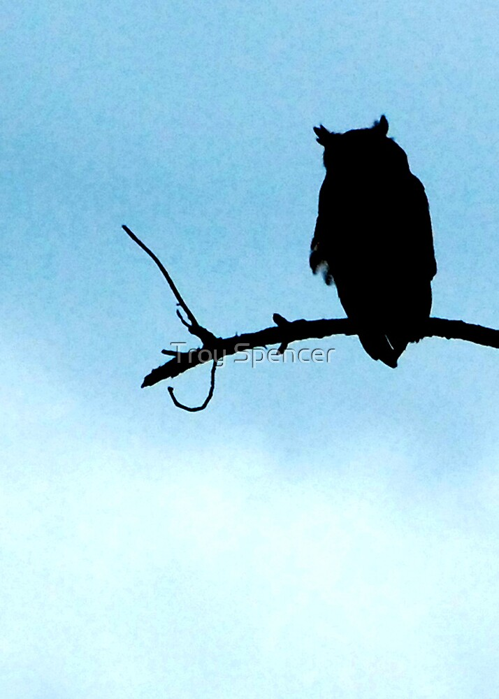 Quot Owl Silhouette Quot By Troy Spencer Redbubble