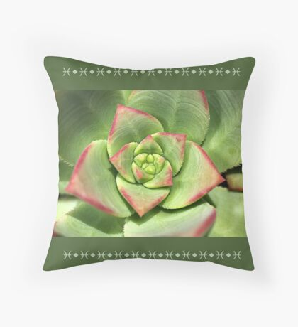 Hens And Chicks Succulent Floor Pillow